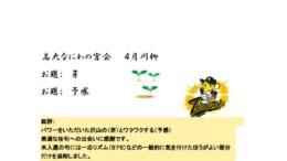 平成30年なにわの宮川柳「芽」のサムネイル