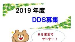 2019 DDS再募集のサムネイル