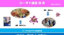 コーダイ通信38号修正のサムネイル